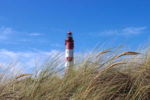 Amrum (Foto: Birte Vogel)