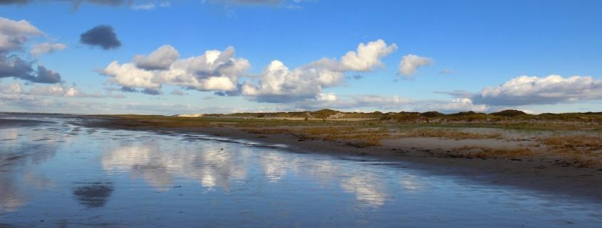 Eine Reihe von Dünen schieben sich von rechts bis nach links durchs Bild, teilweise noch grün, teilweise schon orangegelb. Im Vordergrund steht Wasser, über den Dünen blauer Himmel mit einigen Wolken, die sich unten im Wasser spiegeln. (Foto: Birte Vogel)
