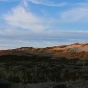Dünenlandschaft im Sonnenuntergang, links ein Bohlenweg, der sich links hinten in den Dünen verliert, rechts einige hohe Dünen, eine davon gerade eben noch von der Sonne beschienen (Foto: Birte Vogel)