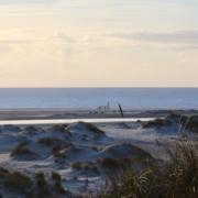 Blick von den Dünen nach unten auf den Strand, an dem zahlreiche Vordünen liegen. Dahinter das blaue Meer, darüber ein hellgelber, hellblauer Spätnachmittagshimmel. Foto: Birte Vogel
