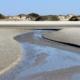 Am Strand: Ein flacher Priel schlängelt sich mitten durchs Bild Richtung Dünengürtel, der im Hintergrund zu sehen ist. Darüber blauer Himmel. (Foto: Birte Vogel)