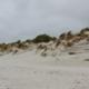 Eine langgestreckte Vordüne an der Nordsee, mit Dünengräsern bewachsen, aber schon gefräst und zerzaust von Sturm und Wasser. Links am Horizont das graue Meer mit weißen Schaumkronen, darüber ein grau-bedeckter Himmel. (Foto: Birte Vogel)