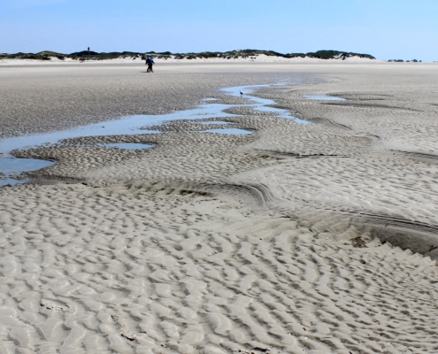 Bei Ebbe am Strand. Im Vordergrund die letzten Pfützen des abgelaufenen Wassers, in denen sich der blaue Himmel spiegelt. Eine Möwe sitzt an einer Pfütze, ein paar Menschen laufen vorbei. Dahinter der Strand und am Horizont grün bewachsene Dünen. (Foto: Birte Vogel)